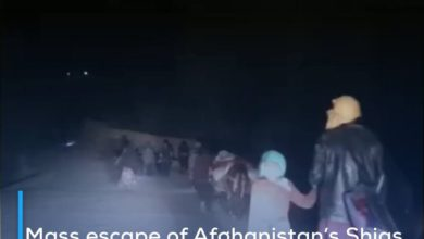 Photo of Mass escape of Afghanistan's Shias to protect their lives and honor from the terrorist Taliban insurgency