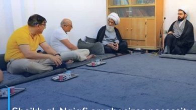 Photo of Sheikh al-Najafi emphasizes necessity of cohesion in relationships between Muslim peoples