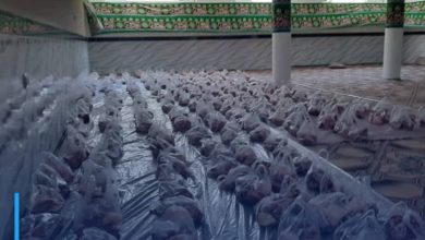 Photo of The Office of Grand Ayatollah Shirazi in Mazar-i-Sharif distributes sacrificial meat to the underprivileged