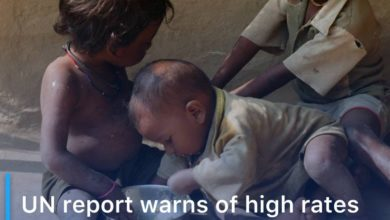 Photo of UN report warns of high rates of hunger in 23 countries
