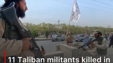 Photo of 11 Taliban militants killed in an ambush in Baghlan, northern Afghanistan