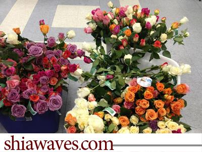 تصویر اختصاصی / برپایی روز گل توسط شیعیان شهردیترویت ایالت میشیگان + تصاویر