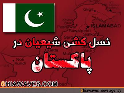 تصویر شهادت 3 شیعه پاکستانی در ایام شهادت امیرمومنان علی علیه السلام