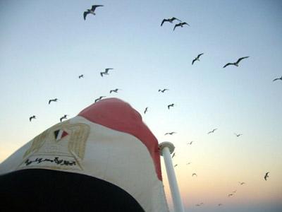 تصویر اعتراض احزاب سلفی به ورود شیعیان به مصر