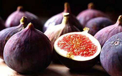 تصویر انجیر میوه ای سرشار از کلسیم
