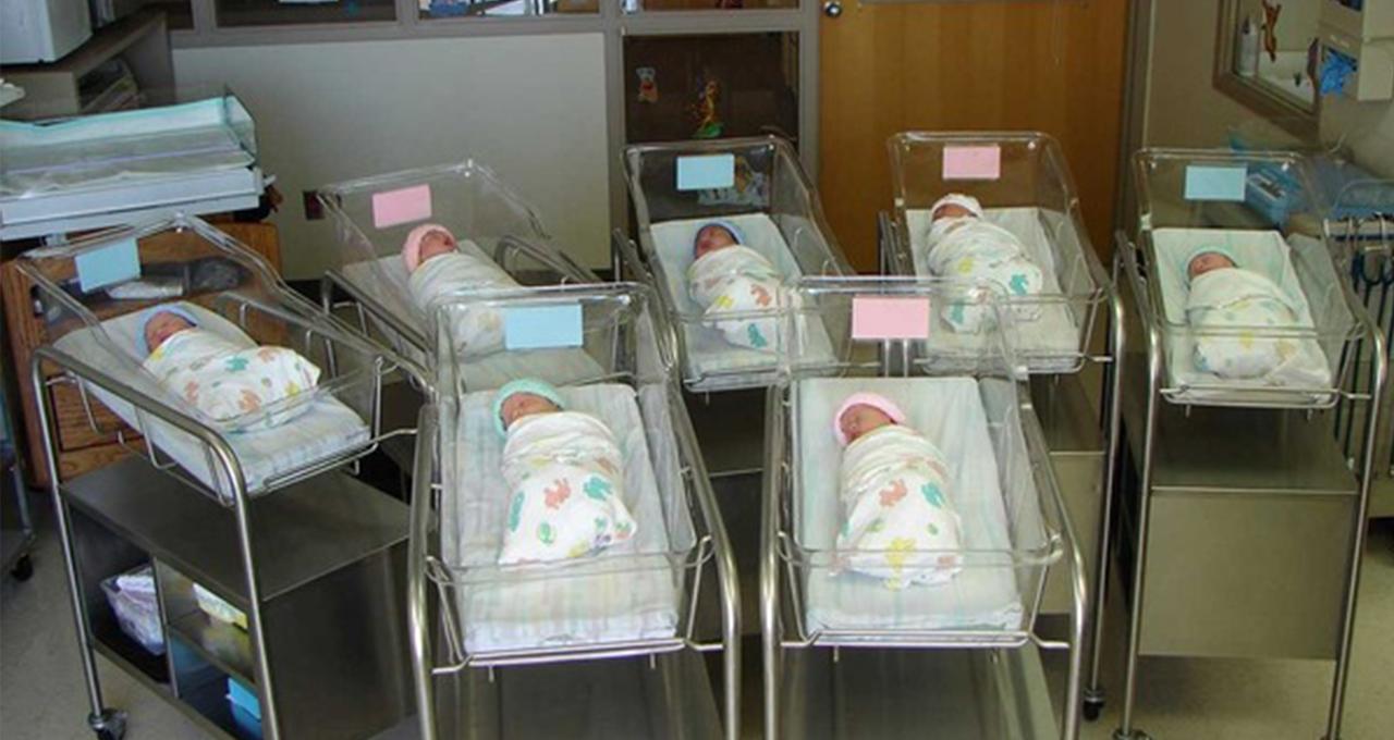 تصویر آمار بی سابقه ولادت در زیارت اربعینِ کربلای معلی