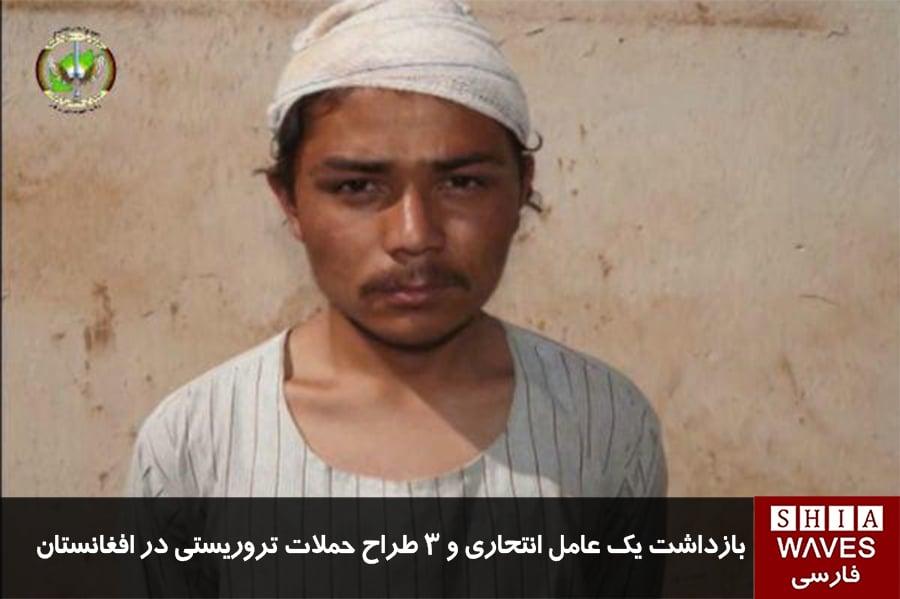 تصویر بازداشت یک عامل انتحاری و ۳ طراح حملات تروریستی در افغانستان