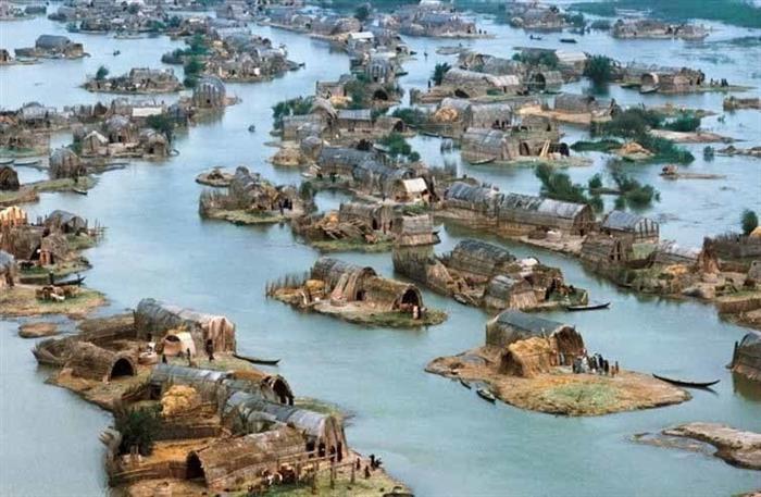 Photo of ثبت جهانى نیزارهای عراق به عنوان محل میراث جهانی