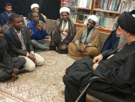 Photo of آیت الله العظمی مدرسی: زیارت اربعین تاثیر بسزایی در گسترش تشیع در آفریقا داشته است