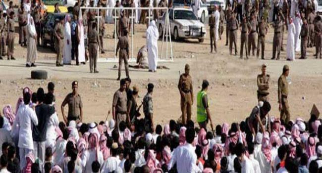 تصویر نگرانی ها از اعدام قریب الوقوع ۱۴ فعال شیعه از سوی عربستان سعودی