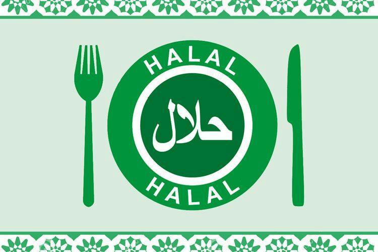 تصویر با بیش از ۲۰ هزار شرکت کننده: نخستین جشنواره «قلب حلال» در شیکاگو برگزار می شود