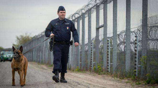 تصویر کمک به پناهجویان در مجارستان غیرقانونی اعلام شد
