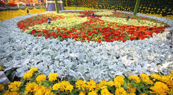 تصویر پس از توقف ۸ ساله؛ برگزاری نمایشگاه گل دمشق