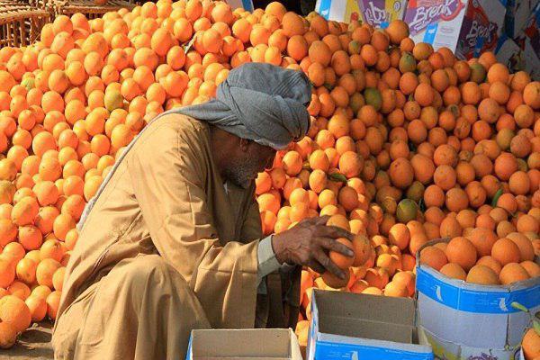 تصویر کمپین تحریم خرید میوه در مصر در پی افزایش قیمت