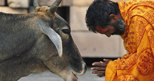 تصویر تعطیلی مغازه فروشندگان گوشت توسط هندوهای افراطی در هند