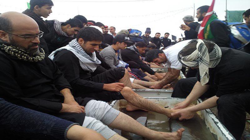 تصویر عضو مجلس اعیان بریتانیا: شیعیان برای صلح و آزادی مبارزه می کنند