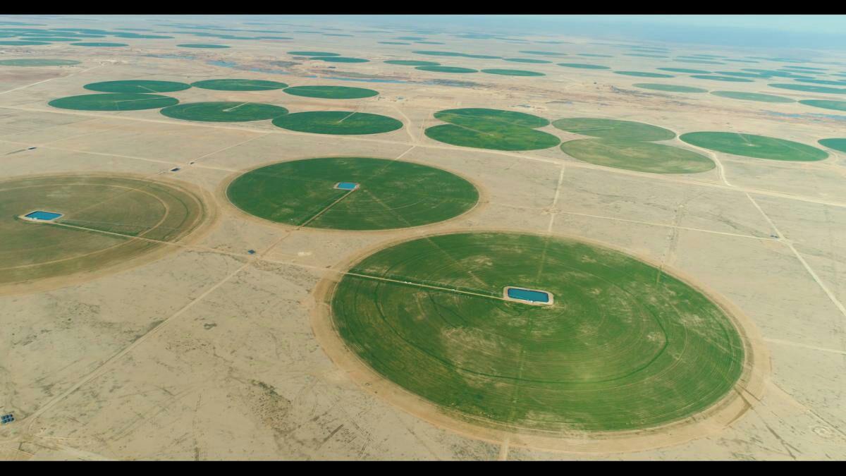 Photo of تبدیل اراضی بیابانی به زمینهای کشاورزی و سرسبز در استان کربلا