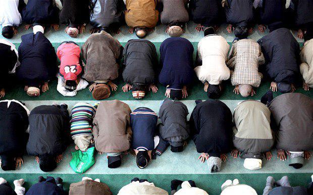 تصویر برگزاری دوره مجازی آشنایی با اسلام در انگلیس
