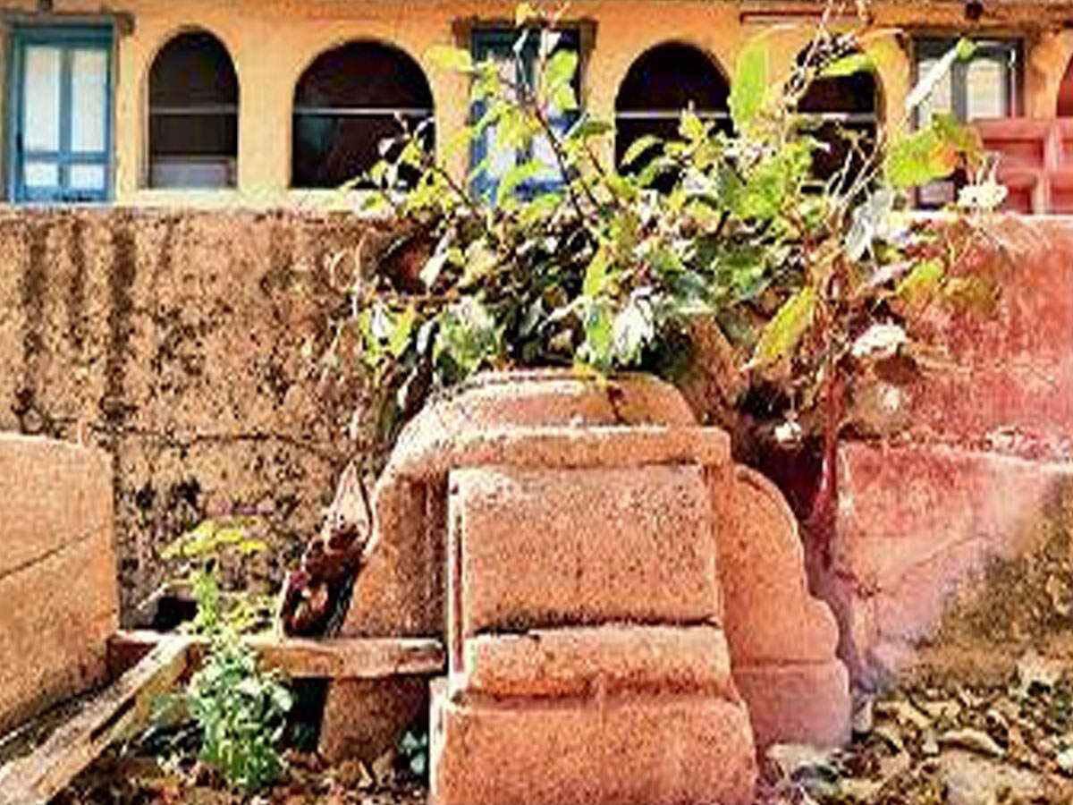 تصویر کشف یک مسجد ۴۰۰ ساله در ایالت «گجرات» هند