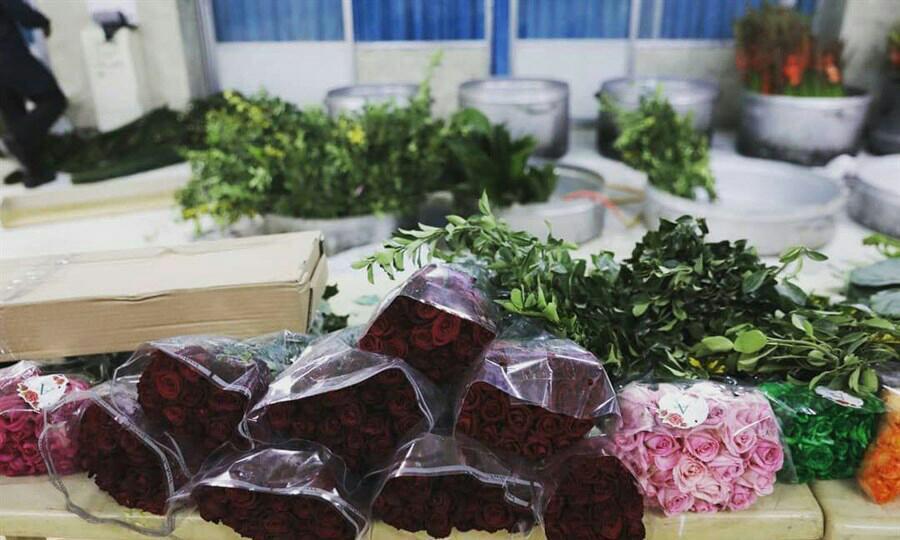تصویر گلآرایی حرم حضرت زینب سلام الله علیها با ۲۵ هزار گل طبیعی