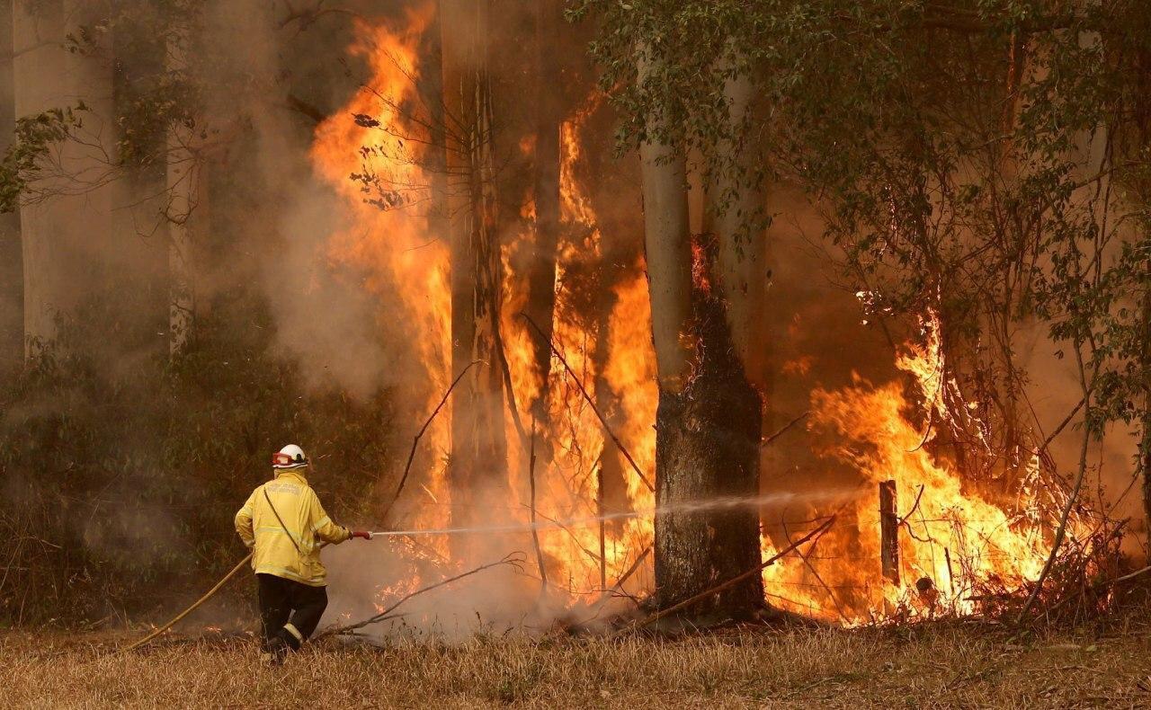 تصویر کمپین جمع آوری کمک های مردمی برای قربانیان آتش سوزی اخیر در استرالیا توسط شیعیان
