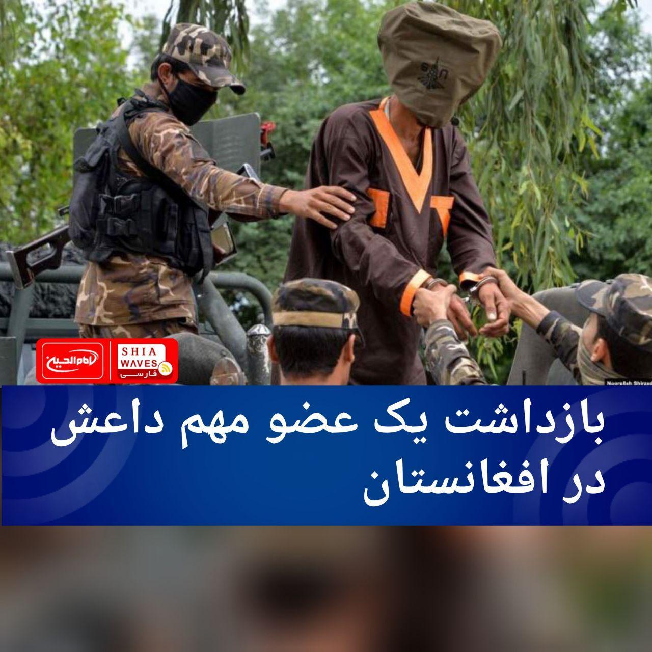 تصویر بازداشت یک عضو مهم داعش در افغانستان