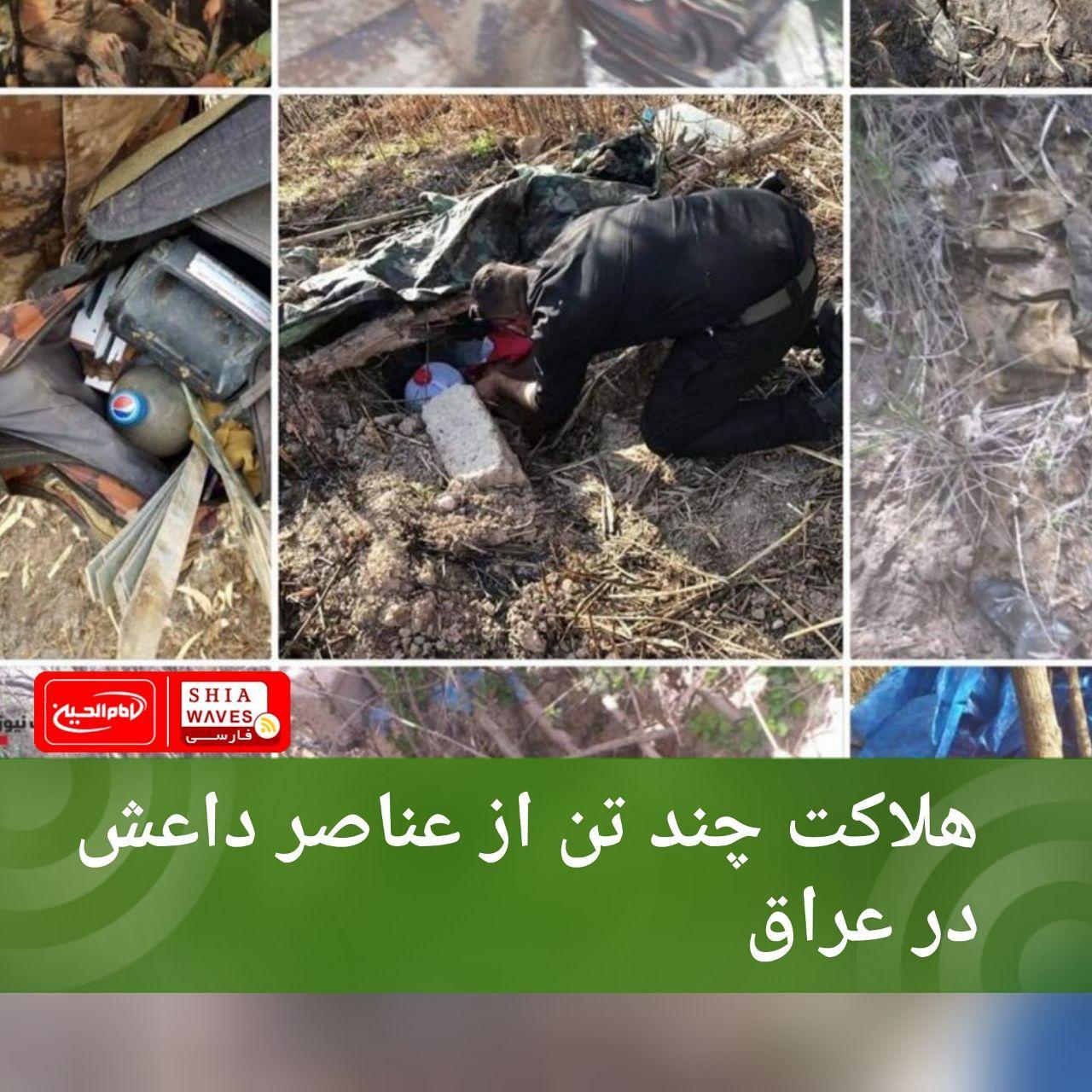 تصویر هلاکت چند تن از عناصر داعش در عراق