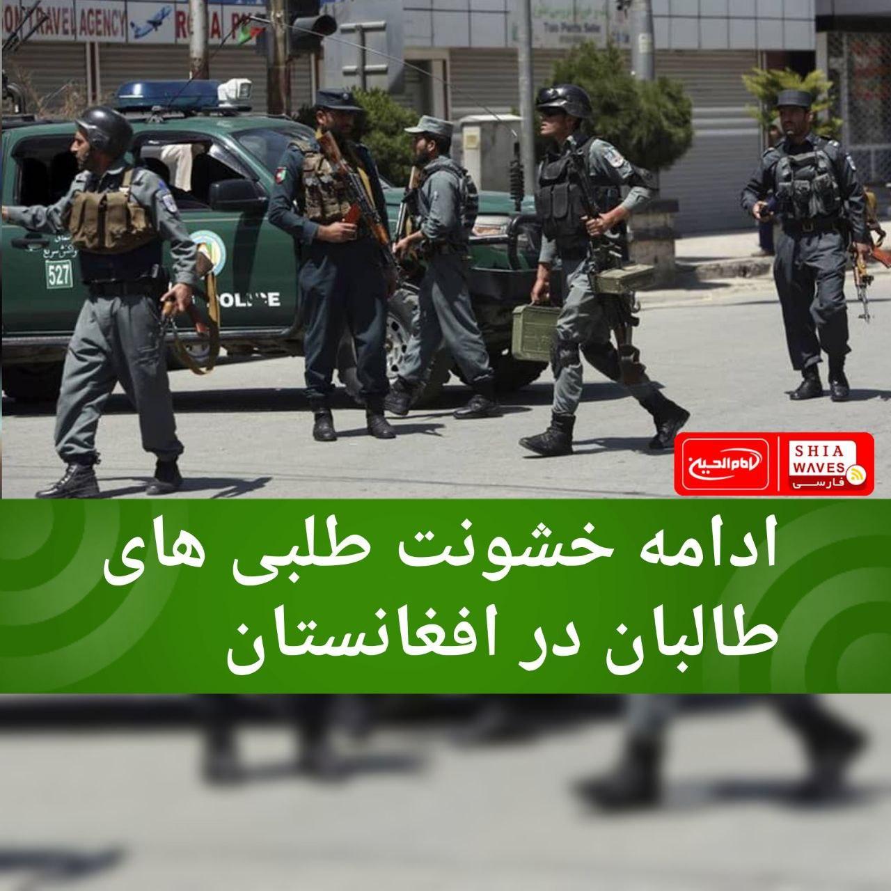 تصویر ادامه خشونت طلبی های طالبان در افغانستان