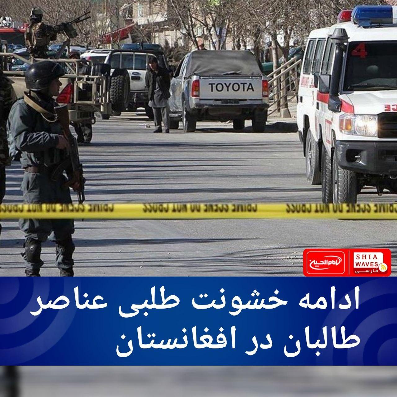 تصویر ادامه خشونت طلبی عناصر طالبان در افغانستان