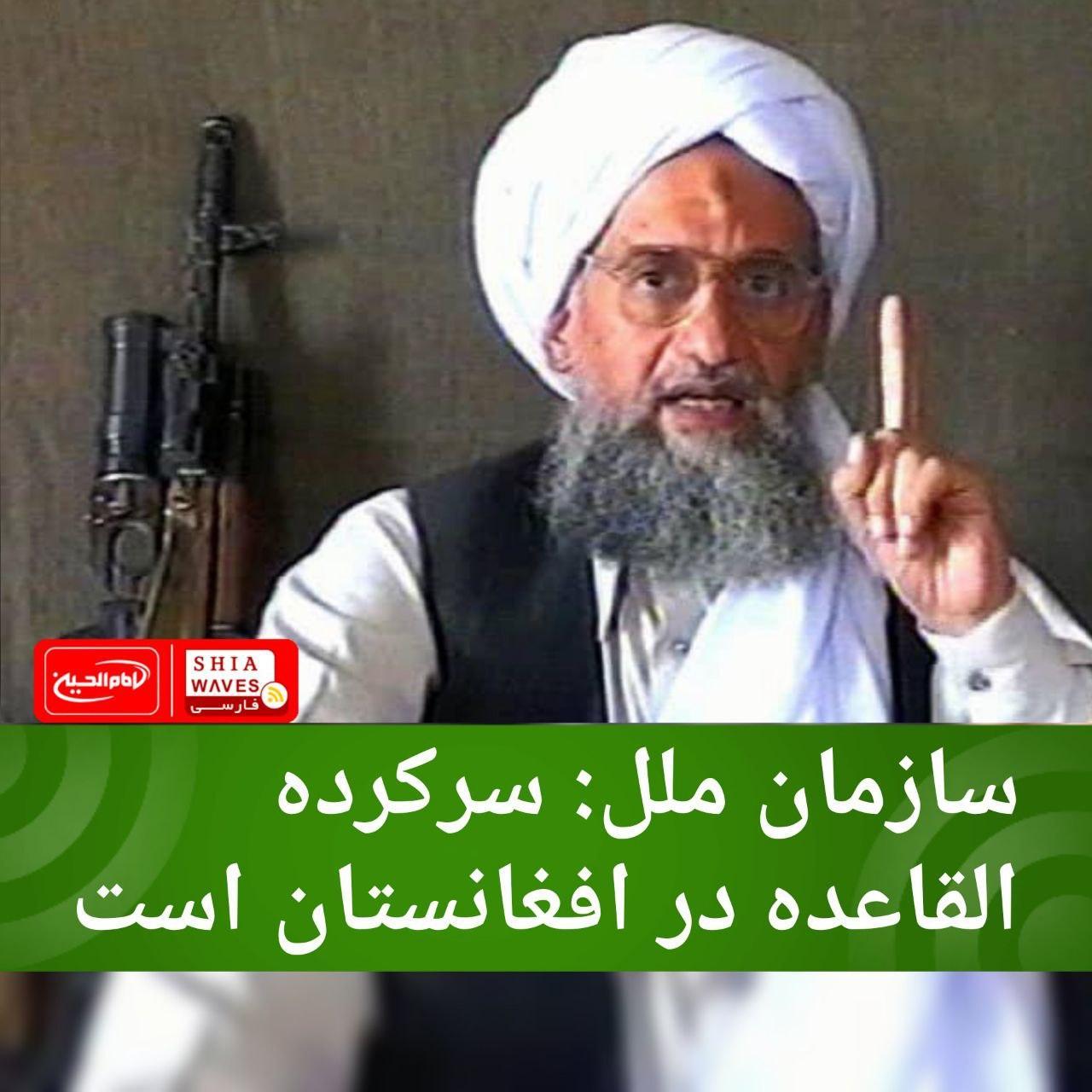 تصویر سازمان ملل: سرکرده القاعده در افغانستان است