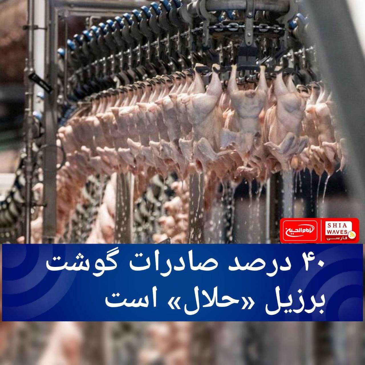 تصویر ۴۰ درصد صادرات گوشت برزیل «حلال» است