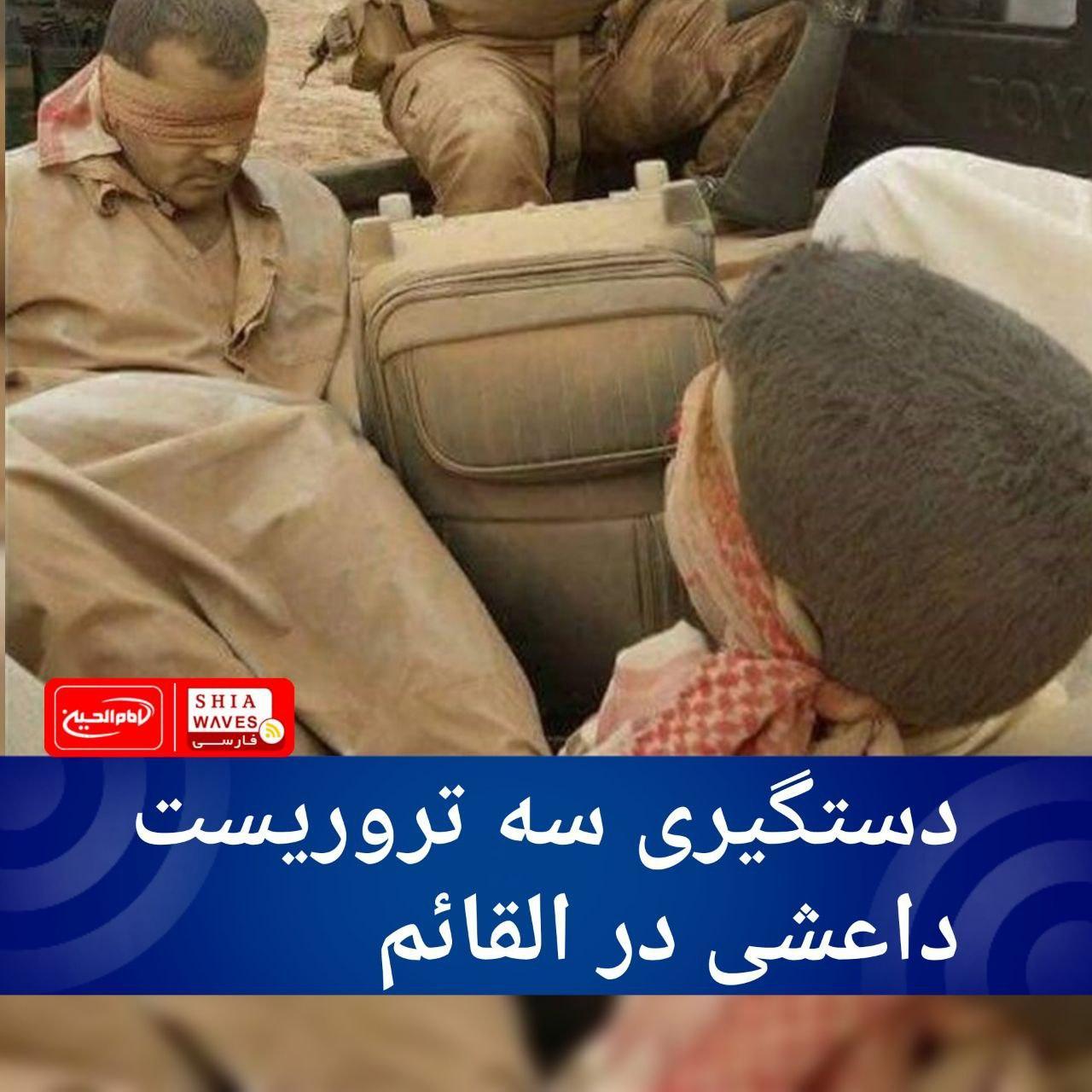 تصویر دستگیری سه تروریست داعشی در القائم