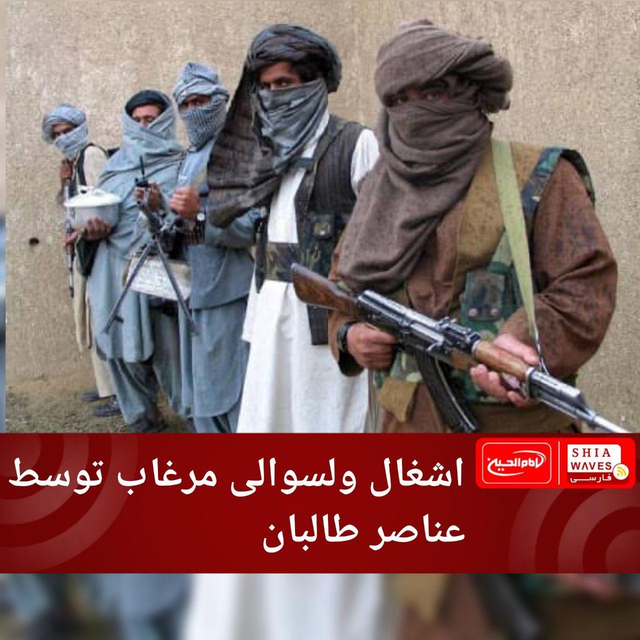تصویر اشغال ولسوالی مرغاب توسط عناصر طالبان