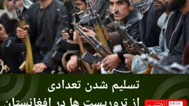 تصویر تسلیم شدن تعدادی از تروریست ها در افغانستان