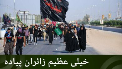 تصویر خیلی عظیم زائران پیاده در راه شهر مقدس نجف