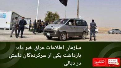 تصویر سازمان اطلاعات عراق خبر داد: بازداشت یکی از سرکردهگان داعش در دیالی
