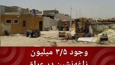 تصویر وجود ۳/۵ میلیون زاغهنشین در عراق