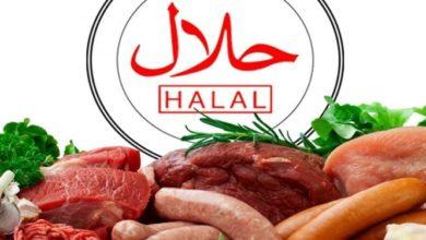 تصویر سرمایه گذاری فزاینده شرکتهای آلمانی در صنعت حلال در سال ۲۰۲۰