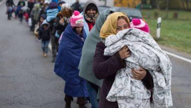 تصویر آلمان ممنوعیت اخراج مهاجران سوری را لغو می کند