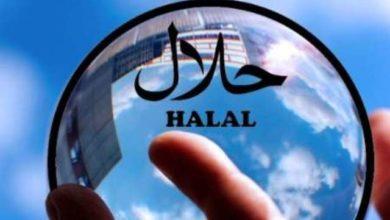 تصویر درخواست از کشورهای اسلامی برای حضور در بازار حلال
