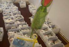 تصویر توزیع بسته های خوراکی در روز میلاد امام علی علیه السلام در بلژیک