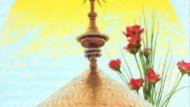 تصویر آغاز مسابقه بزرگ جهانی درباره امیرالمؤمنین علی علیه سلام به ۸ زبان دنیا
