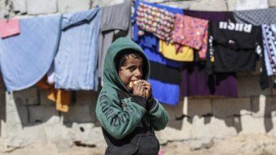 تصویر افزایش ۱۲.۵ درصدی کمک به صندوق زکات آژانس پناهندگان سازمان ملل در سال ۲۰۲۰