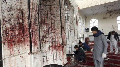 تصویر اعتراف آمریکا؛ اقدامات دولت افغانستان در مناطق شیعه نشین نمادین است