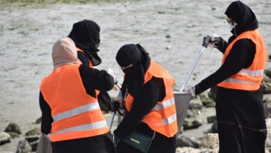 """تصویر کمپین """"قطیفِ پاک"""" در منطقه شیعه نشین عربستان"""