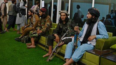 تصویر سناتورهای جمهوریخواه آمریکا: طالبان را گروه تروریستی اعلام کنید