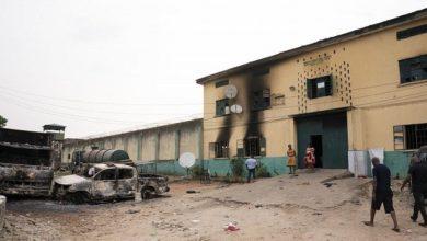 تصویر آزادی ۸۰۰ زندانی در نیجریه توسط تروریستها
