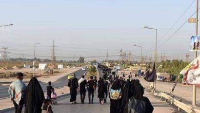 تصویر تصاویر دیدنی پیاده رویی زائران به سمت شهر مقدس نجف